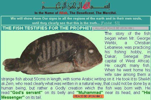 alaah[a] fish showing name of ALLAH azawazal